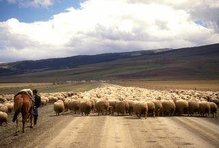 Patagonia01