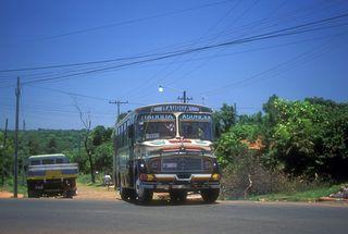 Paraguaybus
