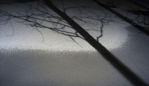Frozenlake