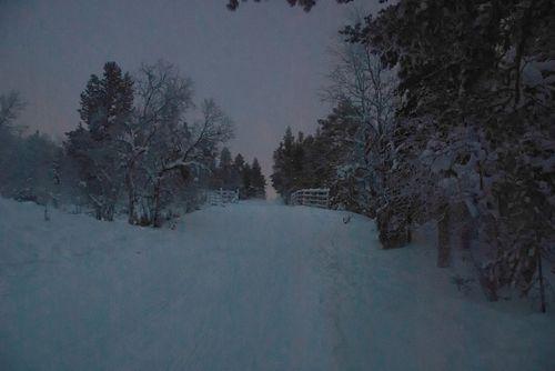 Laplandsnap5