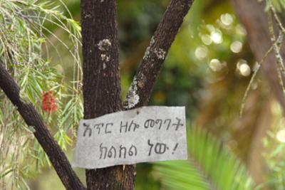Ethiopiasignsmall
